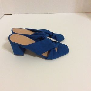 NWT  A New Day Blue Block Heel Clogs